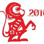2016: Año del mono